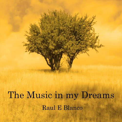 %دانلود آلبوم موسیقی Raul E Blanco   The Music in My Dreams