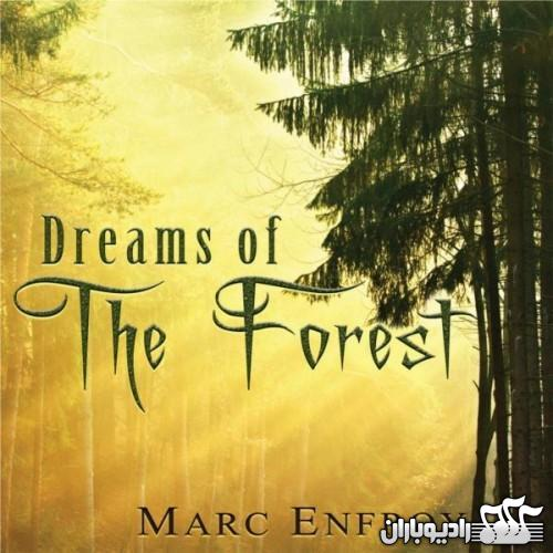 Marc Enfroy - Dreams of the Forest 2012