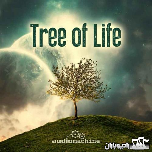 audiomachine - tree of life